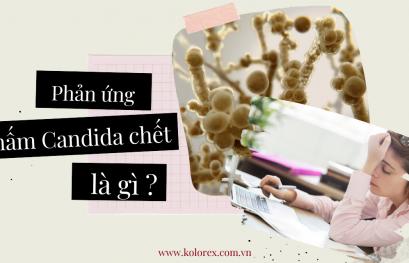 Phản ứng nấm Candida chết là gì ?
