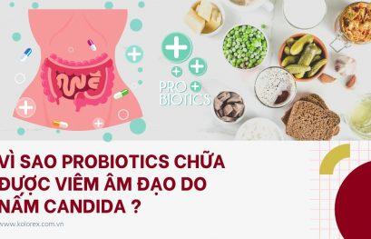 Vì sao Probiotics chữa viêm âm đạo do nấm Candida ?